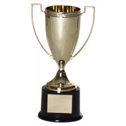 Metal Cup Award C-3903