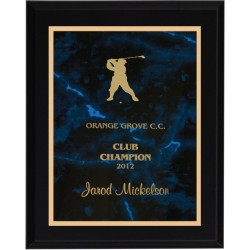Black Matte Finish Plaques PL804